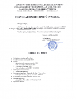 COMITE SYNDICAL 2020 03 03