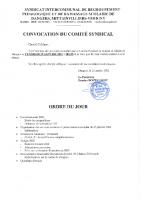 CONVOCATION COMITE 2021 01 29
